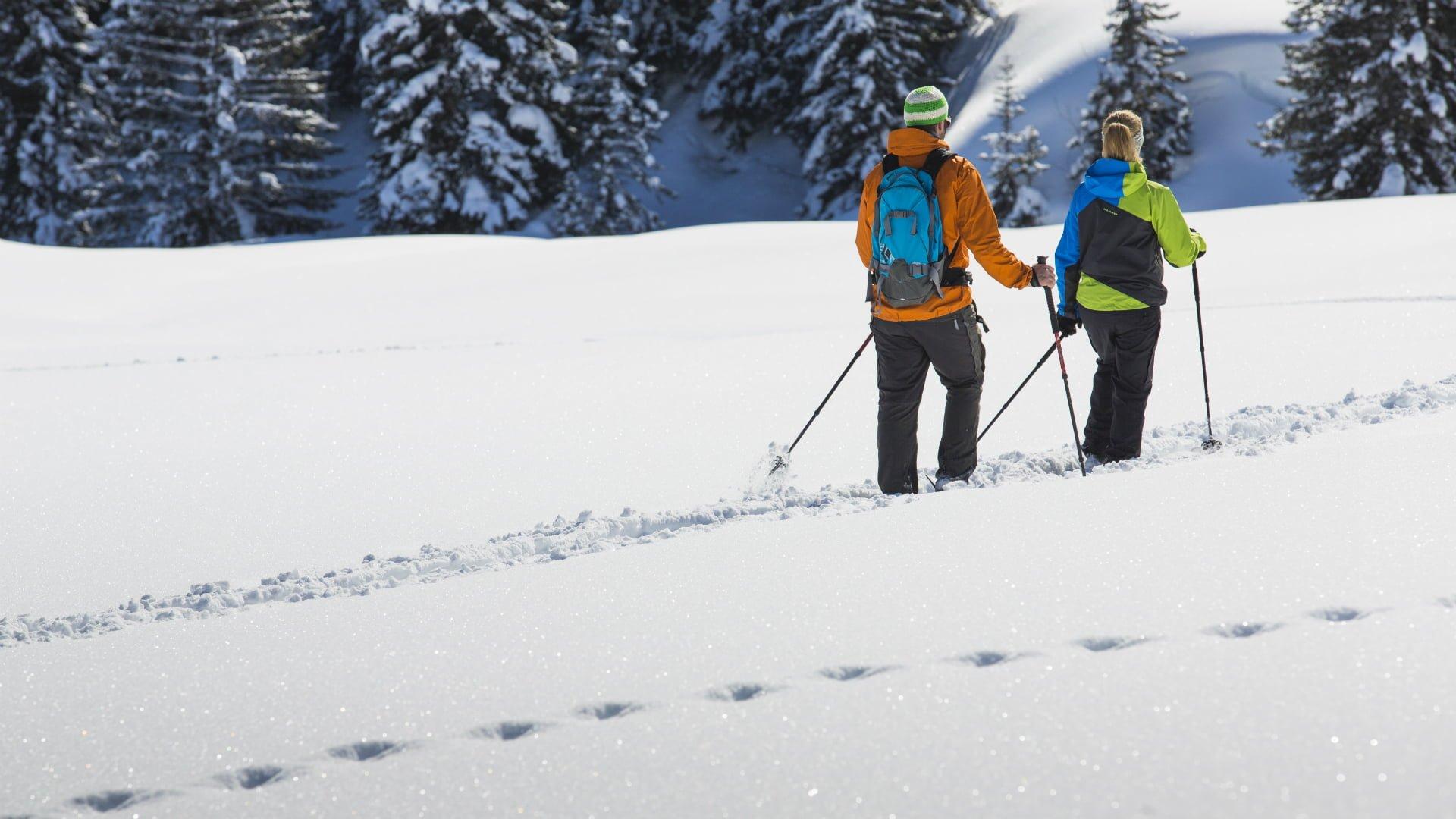 Schneeschuhwandern in der Region Gadmen.